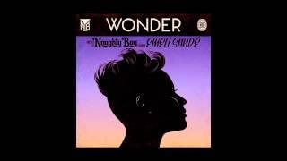 Emeli Sande ft Naughty Boy Wonder Instrumental