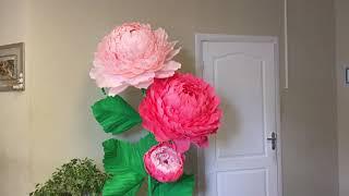 ростовые цветы своими руками. Бело-розовый куст