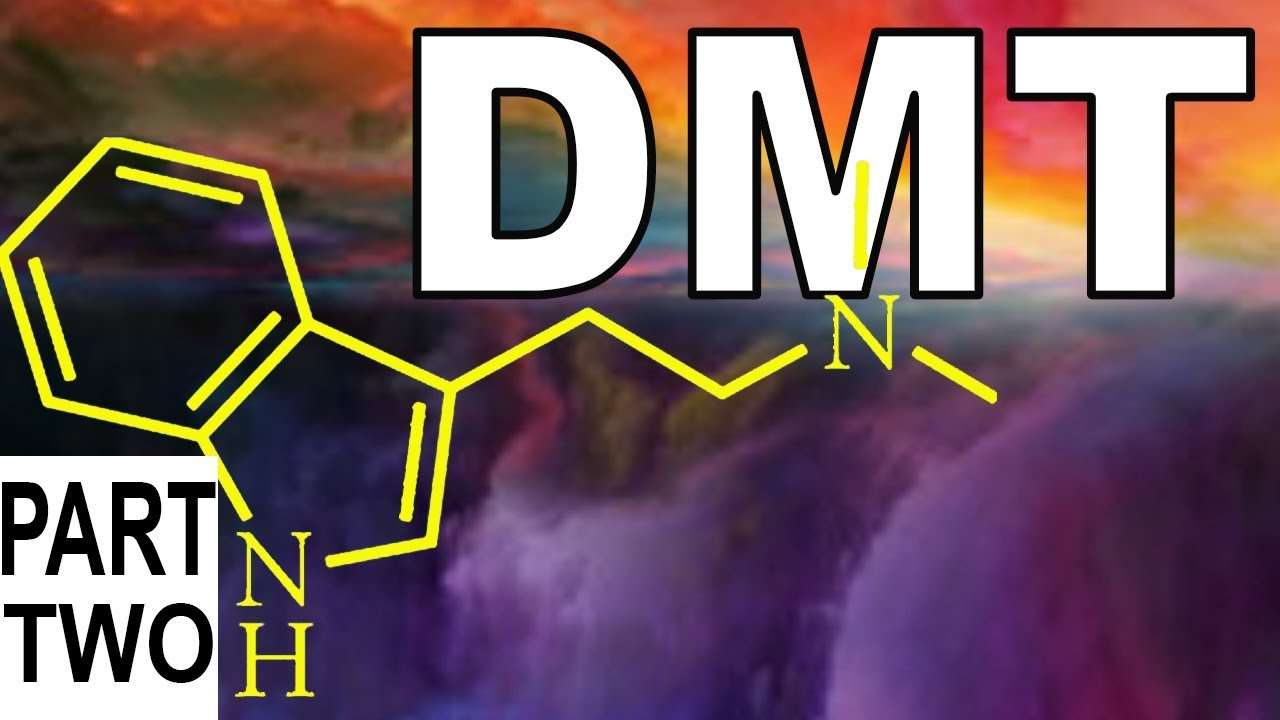 NEUROSCIENTIST on DMT-AYAHUASCA trip in ALTERNATE DIMENSION may be going  INSANE - PART 2