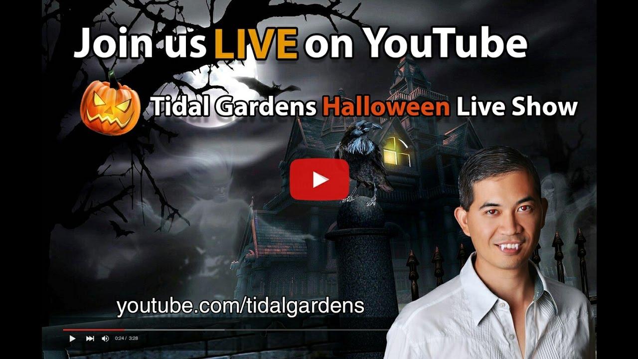 tidal gardens 2016 halloween live sale - youtube