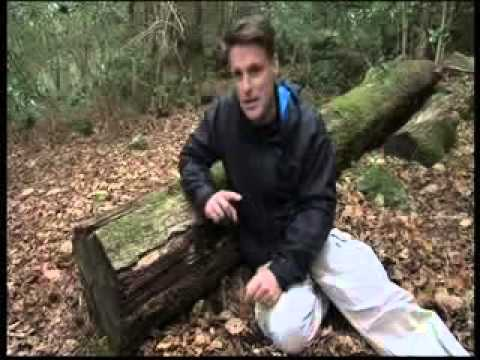BBC Autumnwatch Unsprung 2014 - Episode 2 Part 2