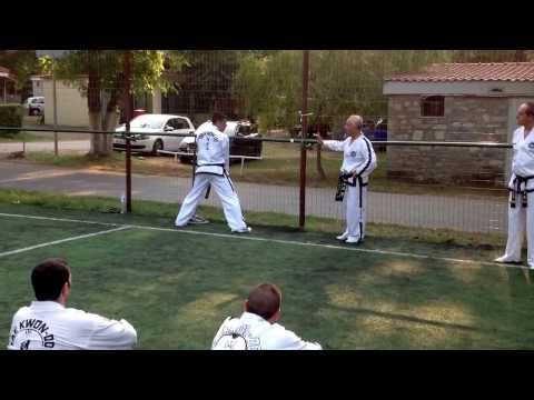 Master Vasilis Alexandris - Teaching side kick