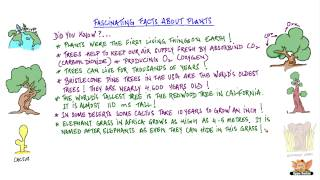 Fascinating Facts about Plants