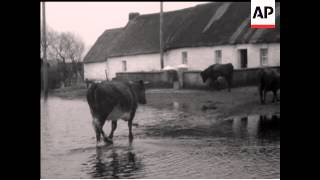 TOO MUCH RAIN - FLOODS IN IRELAND