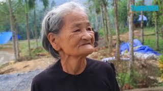 Người dân Quảng Nam điêu đứng vì tiêu chết hàng loạt