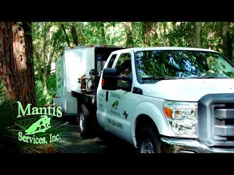Pest Control/Lawn Services Jacksonville, FL-Mantis Services