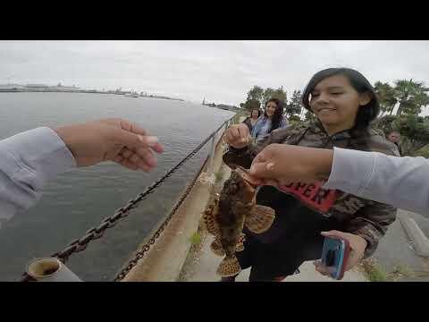 Salt Water In California With Da Squad!!! San Pedro CA