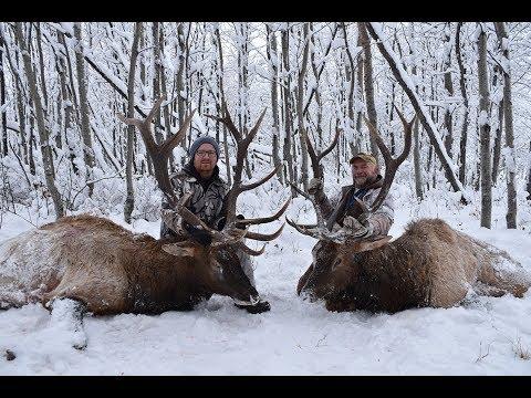 2017 Elk Hunt