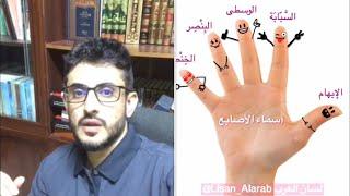 بين عقل عمر بن الخطاب و حديث محمد رسول الله في مسألة دية الأصابع .