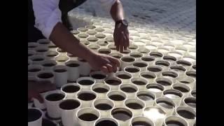 【7260杯咖啡摆出法老面具创世界纪录】