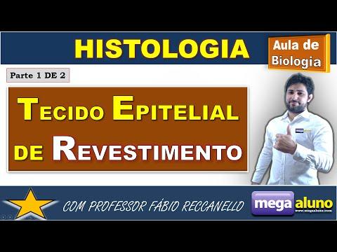 Tecido Epitelial de Revestimento  (parte 1 de 2)