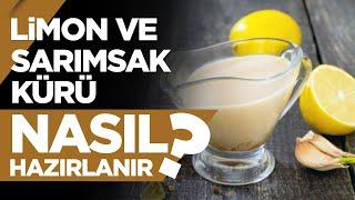 Limon ve Sarımsak Kürü Nasıl Hazırlanır? - Sağlıklı Tarifler 01