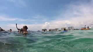 Snorkeling at the Destin Jetties - raw video 4