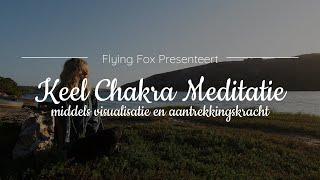 Krachtige Keel Chakra Meditatie ✩ Voor Expressie En Communicatie