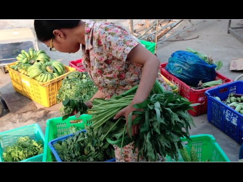 CEDAC NGO Market, Agri Natural products market in Phnom Penh city