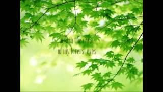 Mumford & Sons- Lovers' Eyes (Lyrics)
