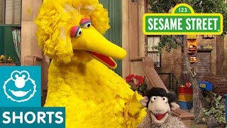 Sesame Street: Big Bird's Joke | #ShareTheLaughter