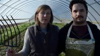 Urban Farming with Cardo's Farm Project, Denton, Texas
