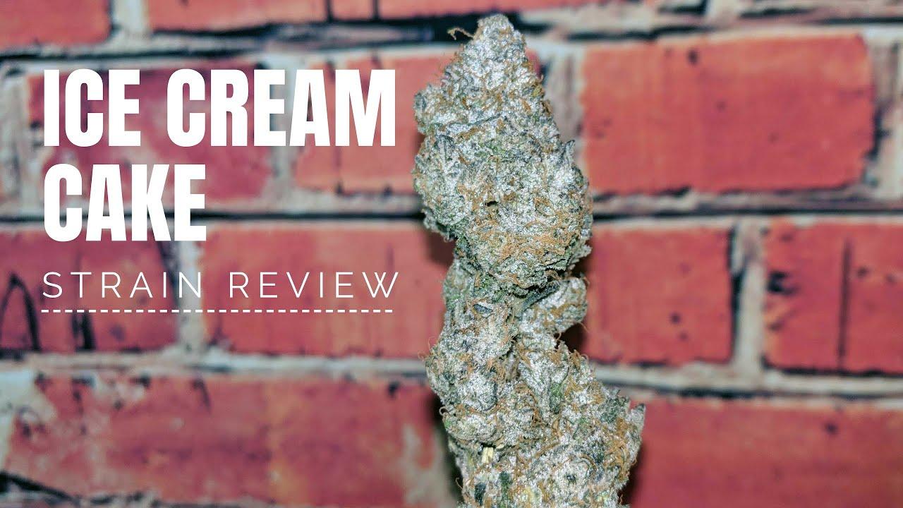 Ice Cream Cake Strain Review