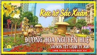 Rực Rỡ Sắc Xuân Đường Hoa Nguyễn Huệ Sài Gòn | Tết Canh Tý 2020 | lang thang Sài Gòn
