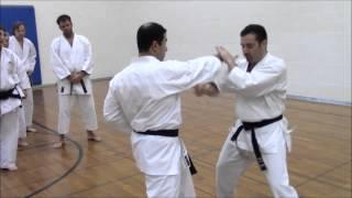 How To Shotokan: Elements of Tekki Sandan