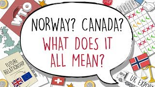 Explained: what Brexit could we get? Norway? Canada? WTO?