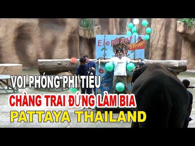 VOI PHÓNG PHI TIÊU PATTAYA THAILAND CHÀNG TRAI ĐỨNG LÀM BIA
