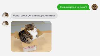 """""""Мама плохого не посоветует"""" КОТОСМС (Серия - 11)"""
