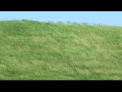 Toltec Indian Mounds State Park - Platform Mound (Scott, AR)