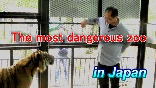 The most dangerous zoo in Japan