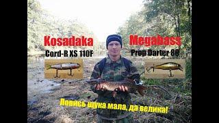 Рыбалка Щука Щука на спиннинг Megabass против Kosadaka Малые реки Пензенской области Fishing