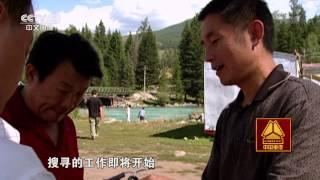 本期节目主要内容: 在世界各地,有关水怪的传闻不断,中国的长白山、赛...