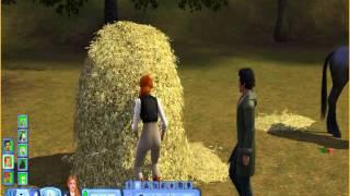 Sims 3 Pets Sim Haystack Woohoo