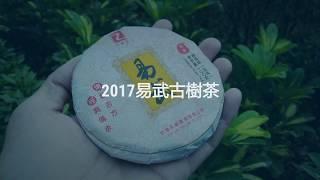 易武七村八寨古樹茶