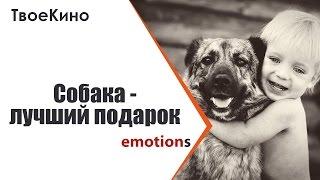 Собака лучший подарок. Эмоции на подарки