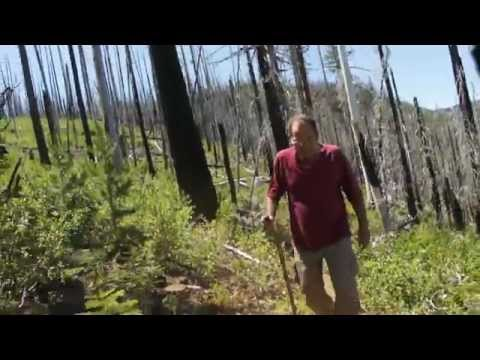 Nature of Oregon - Hiking the Cabot Trail