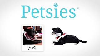 5 People Surprised by Custom Stuffed Animal Lookalike to Remember a Past Pet - Petsies