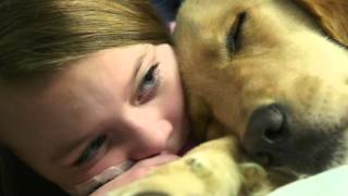Canine Comfort | Cincinnati Children