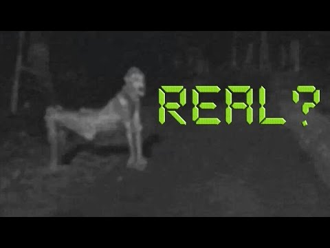 ALIENS ARE REAL!