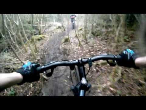 Moycullen woods mountain bike trails!