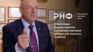 В Волгограде разрабатываются улучшенные кормовые добавки для сельского хозяйства