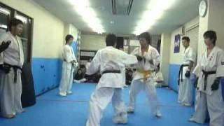 テクニック集 日本空手道 如水會館 千葉支部 japan karate-do josuikaikan chiba