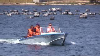 Инспекторы ГИМС принимают экзамены на право управления маломерным судном у будущих судоводителей