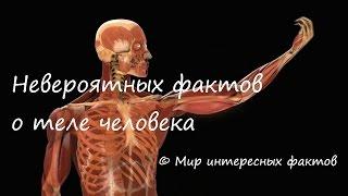 Невероятных фактов о теле человека | Мир интересных фактов