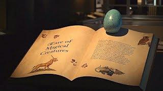Выставка о Гарри Поттере включила памятные вещи и древние артефакты (новости)