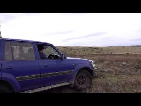 Falkland Islands Journey by 4x4 from Port Stanley to Volunteer Point