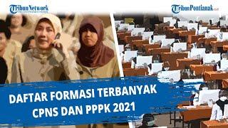 Daftar Formasi Terbanyak CPNS Dan PPPK 2021