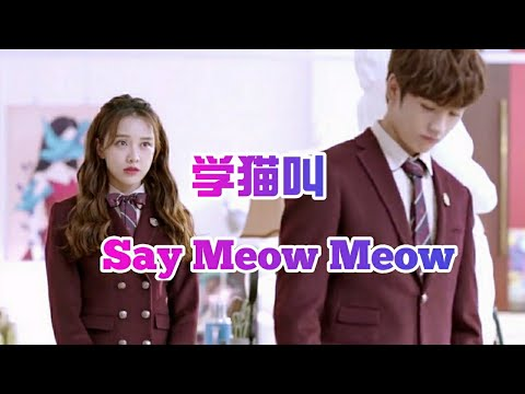 学猫叫Say Meow Meow(English Version)–封茗囧菌 MV版 Chinese Song英文版Learn To Meow Tik Tok China/Love Story