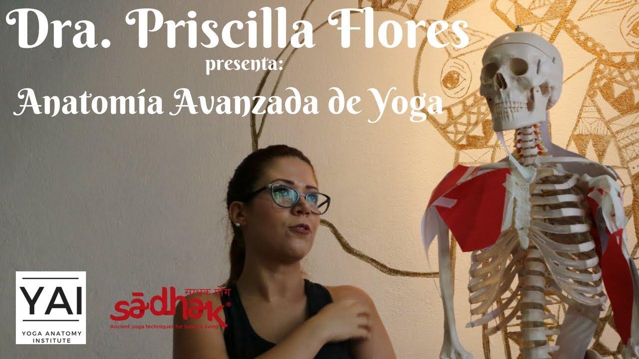 YAI YOGA ANATOMY INSTITUTE - Curso avanzado anatomía de yoga - YouTube