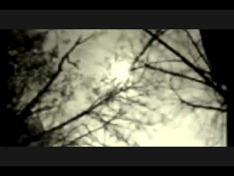throwdown-no-love-video-by-jimmie-vaden-rocko633